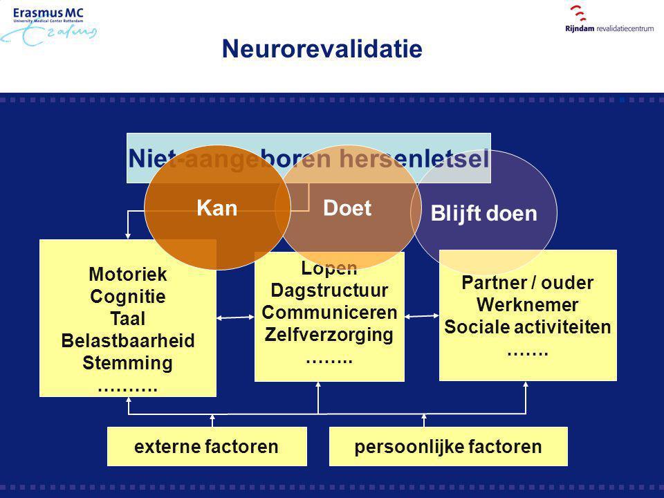 Motoriek Cognitie Taal Belastbaarheid Stemming ………. Niet-aangeboren hersenletsel Lopen Dagstructuur Communiceren Zelfverzorging …….. Partner / ouder W