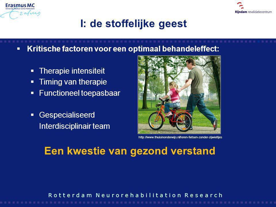  Kritische factoren voor een optimaal behandeleffect:  Therapie intensiteit  Timing van therapie  Functioneel toepasbaar  Gespecialiseerd Interdi