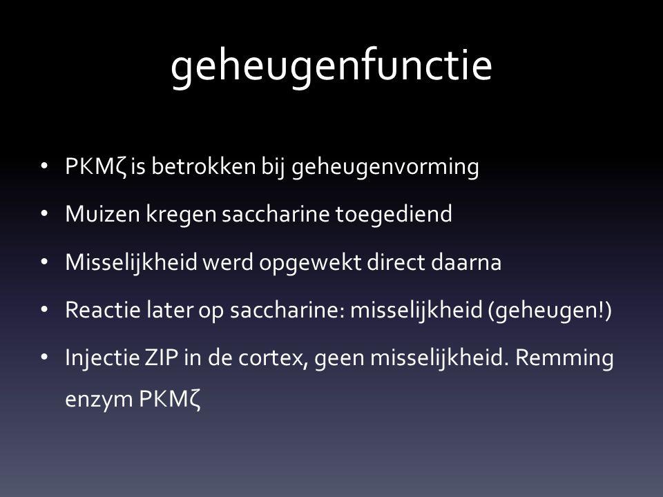 geheugenfunctie PKMζ is betrokken bij geheugenvorming Muizen kregen saccharine toegediend Misselijkheid werd opgewekt direct daarna Reactie later op s