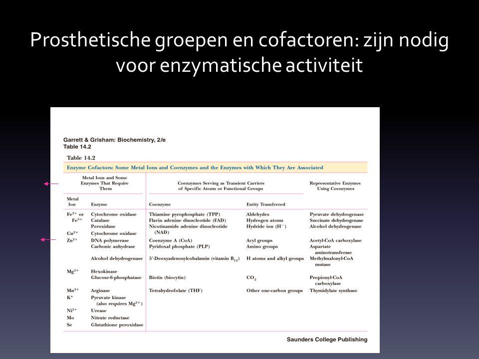 Prosthetische groepen en cofactoren: zijn nodig voor enzymatische activiteit