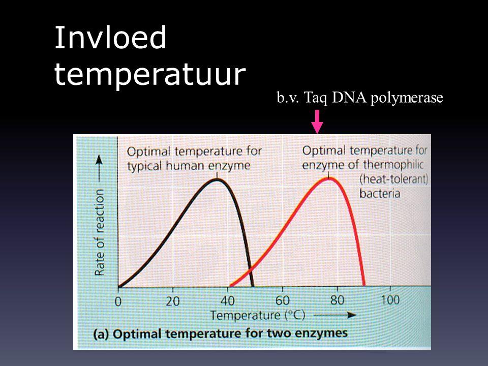 Invloed temperatuur b.v. Taq DNA polymerase