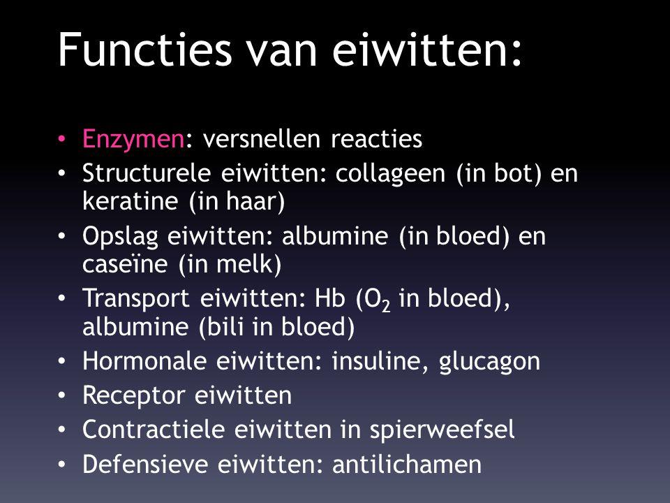 Functies van eiwitten: Enzymen: versnellen reacties Structurele eiwitten: collageen (in bot) en keratine (in haar) Opslag eiwitten: albumine (in bloed