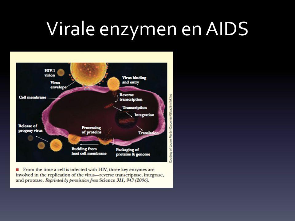 Virale enzymen en AIDS