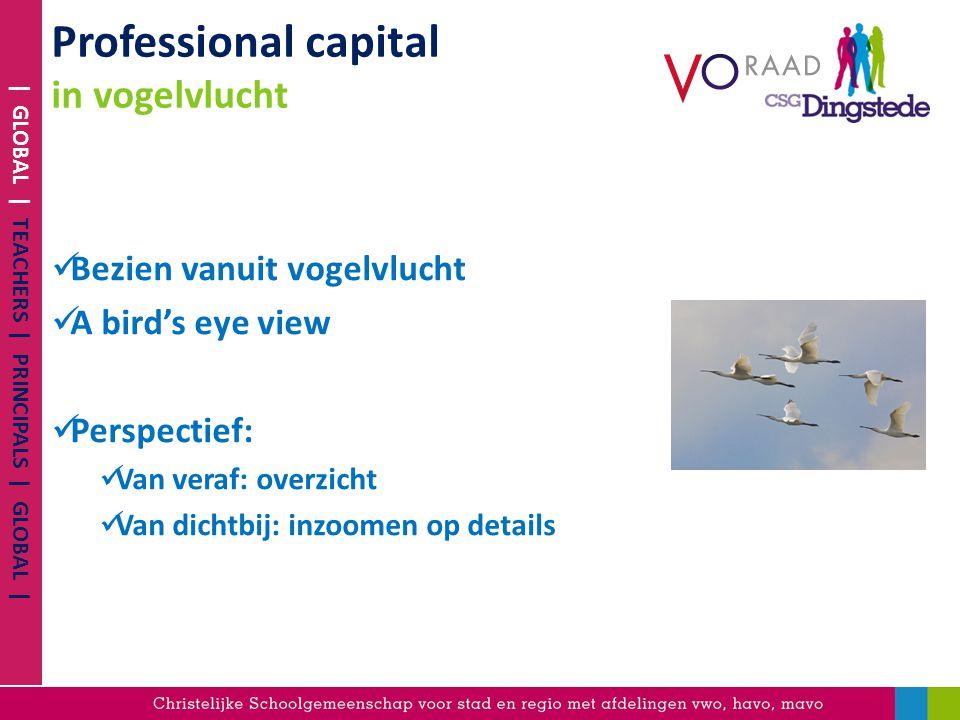 Professional capital in vogelvlucht Bezien vanuit vogelvlucht A bird's eye view Perspectief: Van veraf: overzicht Van dichtbij: inzoomen op details |