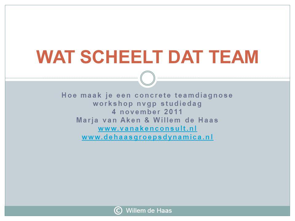 Hoe maak je een concrete teamdiagnose workshop nvgp studiedag 4 november 2011 Marja van Aken & Willem de Haas www.vanakenconsult.nl www.dehaasgroepsdy