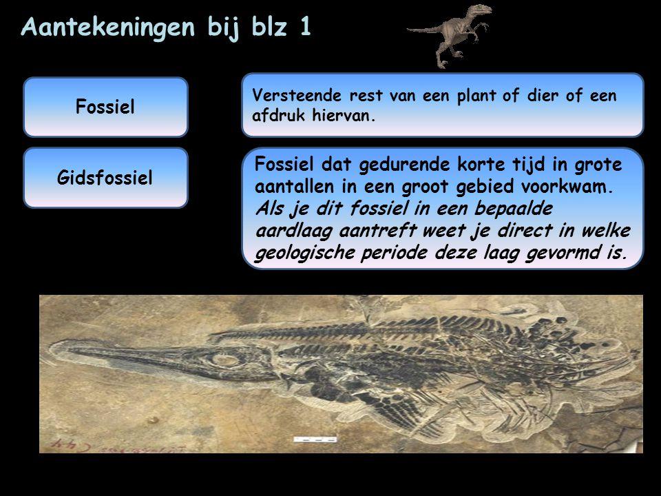 De geologische kalender is een overzicht van de ontwikkeling van het leven op aarde.