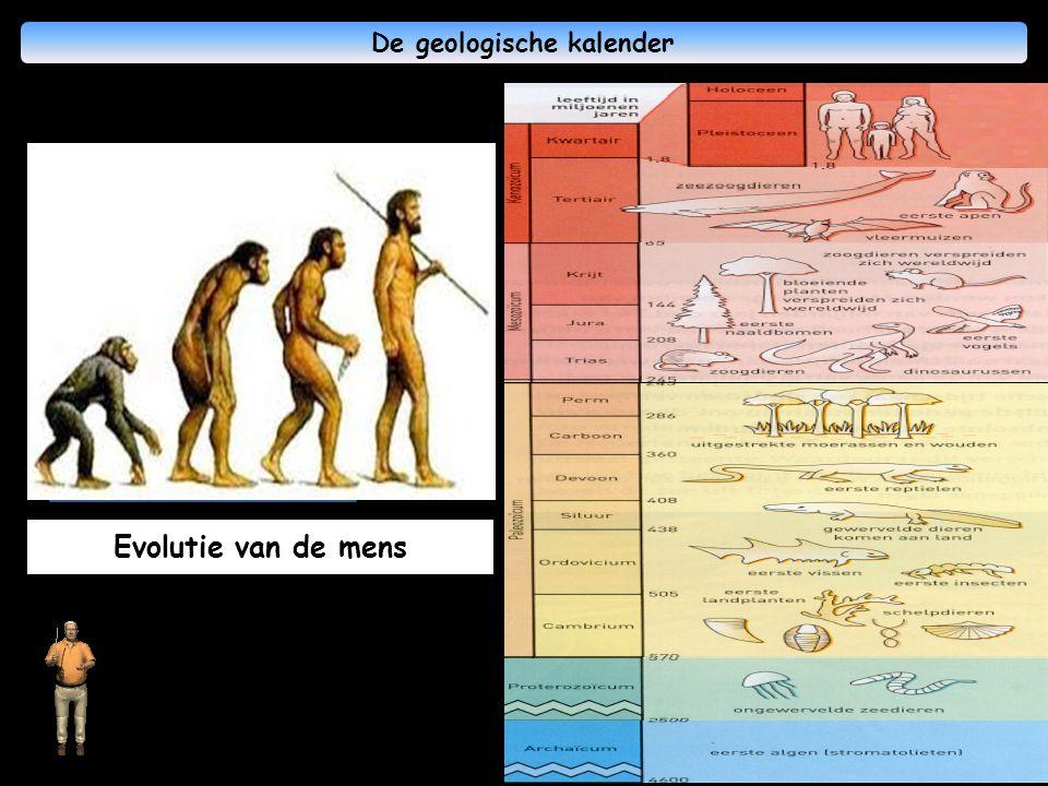 De geologische kalender Een reis in de diepte is een reis in het verleden !
