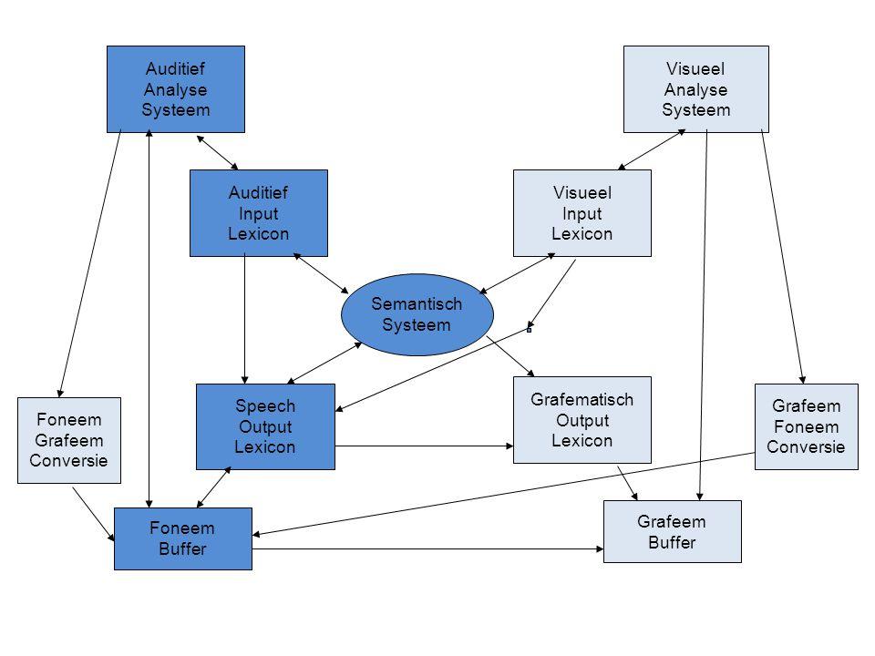 Semantisch Systeem Auditief Input Lexicon Visueel Input Lexicon Speech Output Lexicon Grafematisch Output Lexicon Auditief Analyse Systeem Visueel Ana