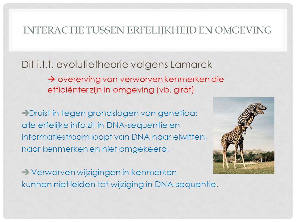 INTERACTIE TUSSEN ERFELIJKHEID EN OMGEVING Dit i.t.t. evolutietheorie volgens Lamarck  overerving van verworven kenmerken die efficiënter zijn in omg