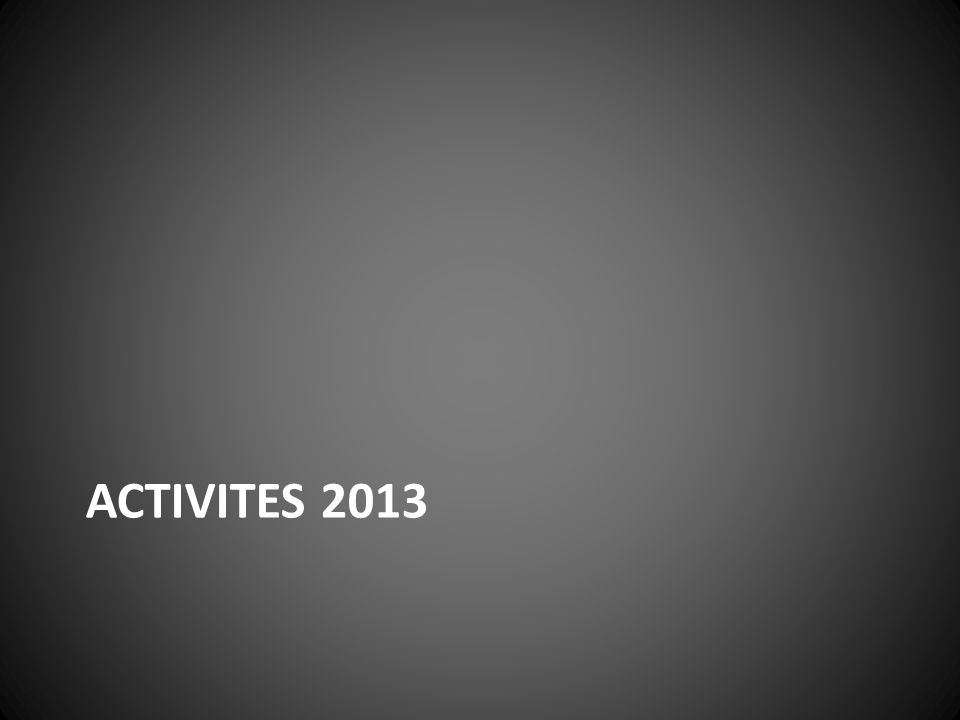 ACTIVITES 2013