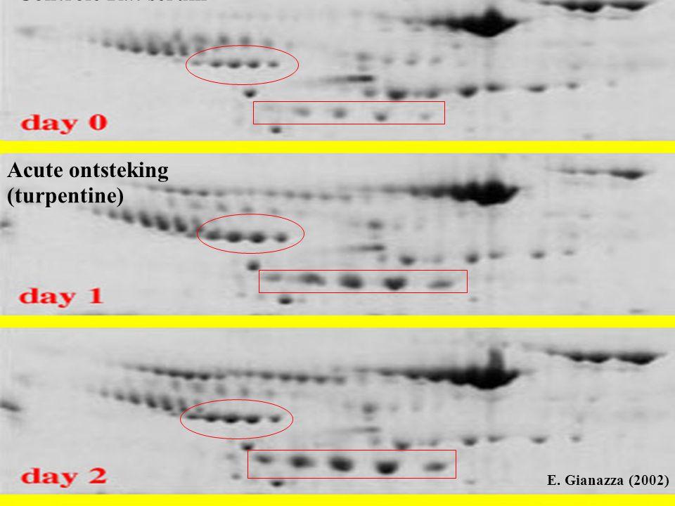 intensiteit m/z massaspectrum van de kolomuitstroom is weliswaar minder complex maar blijft toch nog te complex voor de massaspectrometer: Kan wel alle ionen die op een bepaald ogenblik uit de kolom stromen wegen , maar kan er geen verdere sequentieinformatie uithalen, behalve uit de drie meest intense ionen (instrumentele beperking  er gaat mogelijks veel informatie verloren) Sequentieinformatie wordt bekomen dmv fragmentatie van het peptide C ion  het bekomen massaspectrum noemt men een fragmentatiespectrum Per full scan spectrum krijgen we maximaal 3 fragmentatiespectra (volledige cycle time: ca 1.5 sec) Fictief massaspectrum op ogenblik dat peptide C uit de kolom stroomt gewicht van peptide C (full scan spectrum)