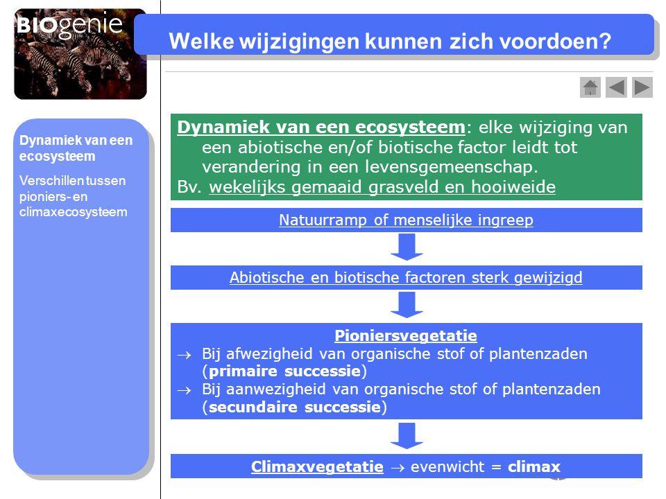 Verschillen pioniers- en climaxecosysteem Pioniers- ecosysteem Climax- ecosysteem Biomassaneemt toeblijft gelijk Vegetatieéén niveaumeerdere niveaus Biodiversiteitlaaghoog Voedselwebeenvoudigcomplex Verandering abiotische factoren sterk wisselendweinig Dynamiek van een ecosysteem Verschillen tussen pioniers- en climaxecosysteem