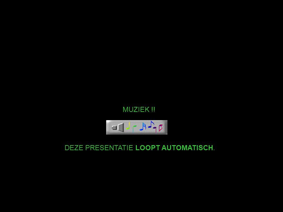 MUZIEK !! DEZE PRESENTATIE LOOPT AUTOMATISCH.