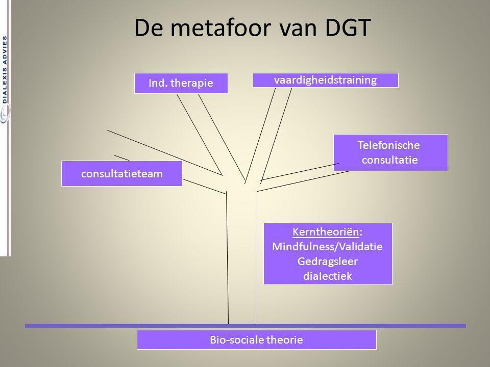 De metafoor van DGT Telefonische consultatie vaardigheidstraining Ind. therapie consultatieteam Bio-sociale theorie Kerntheoriën: Mindfulness/Validati