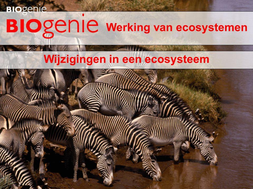 Wijzigingen in een ecosysteem Werking van ecosystemen