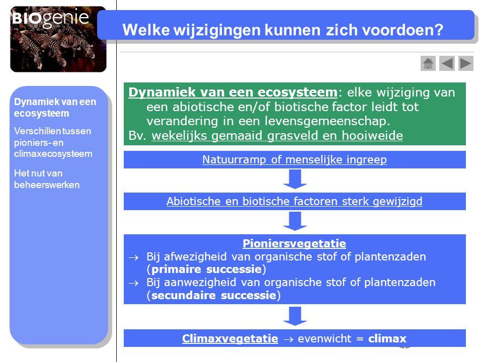 Dynamiek van een ecosysteem Het nut van beheerswerken Verschillen tussen pioniers- en climaxecosysteem Welke wijzigingen kunnen zich voordoen? Dynamie
