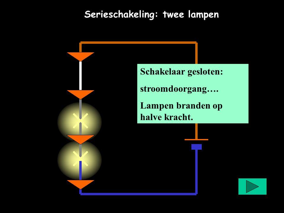 Serieschakeling: twee lampen Schakelaar gesloten: stroomdoorgang…. Lampen branden op halve kracht.