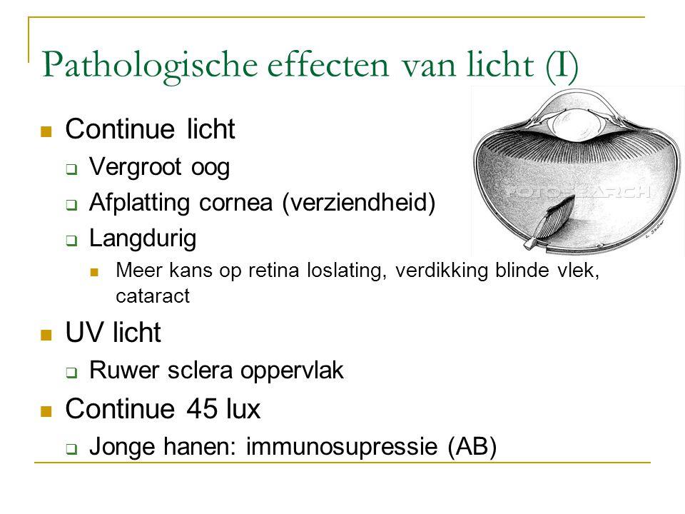 Pathologische effecten van licht (I) Continue licht  Vergroot oog  Afplatting cornea (verziendheid)  Langdurig Meer kans op retina loslating, verdi