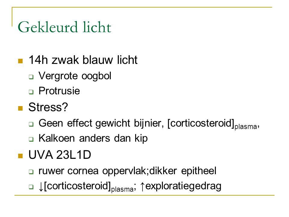 Gekleurd licht 14h zwak blauw licht  Vergrote oogbol  Protrusie Stress?  Geen effect gewicht bijnier, [corticosteroid] plasma,  Kalkoen anders dan
