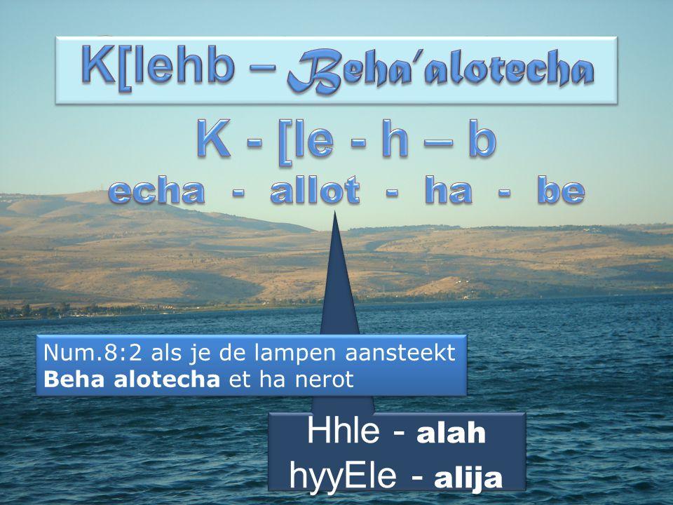 Hhle - alah hyyEle - alija Hhle - alah hyyEle - alija Num.8:2 als je de lampen aansteekt Beha alotecha et ha nerot Num.8:2 als je de lampen aansteekt Beha alotecha et ha nerot