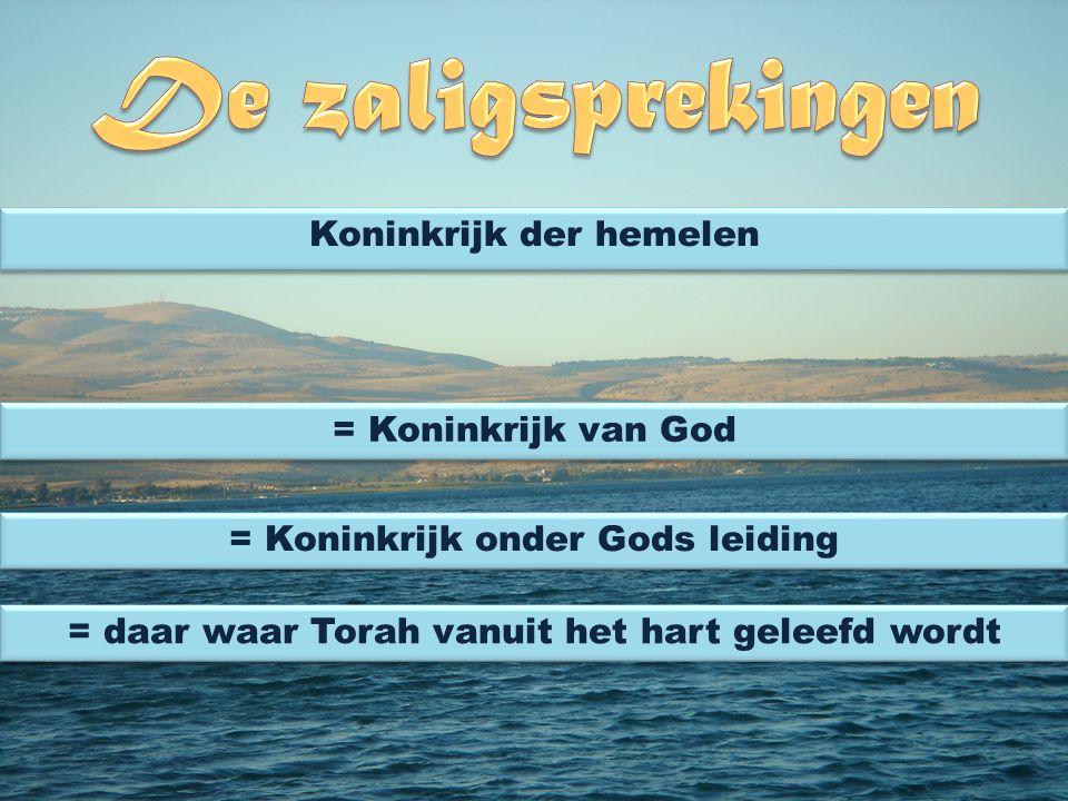 Koninkrijk der hemelen = Koninkrijk van God = Koninkrijk onder Gods leiding = daar waar Torah vanuit het hart geleefd wordt