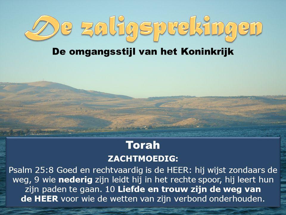 Torah ZACHTMOEDIG: Psalm 25:8 Goed en rechtvaardig is de HEER: hij wijst zondaars de weg, 9 wie nederig zijn leidt hij in het rechte spoor, hij leert hun zijn paden te gaan.