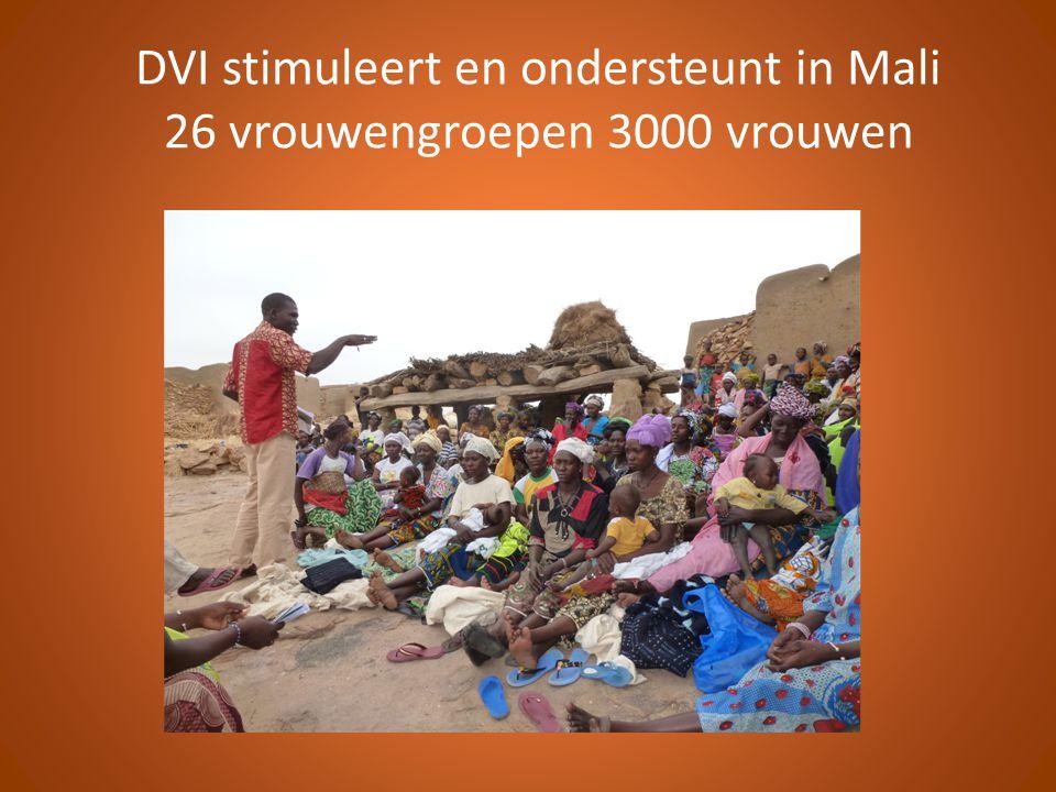 DVI stimuleert en ondersteunt in Mali 26 vrouwengroepen 3000 vrouwen