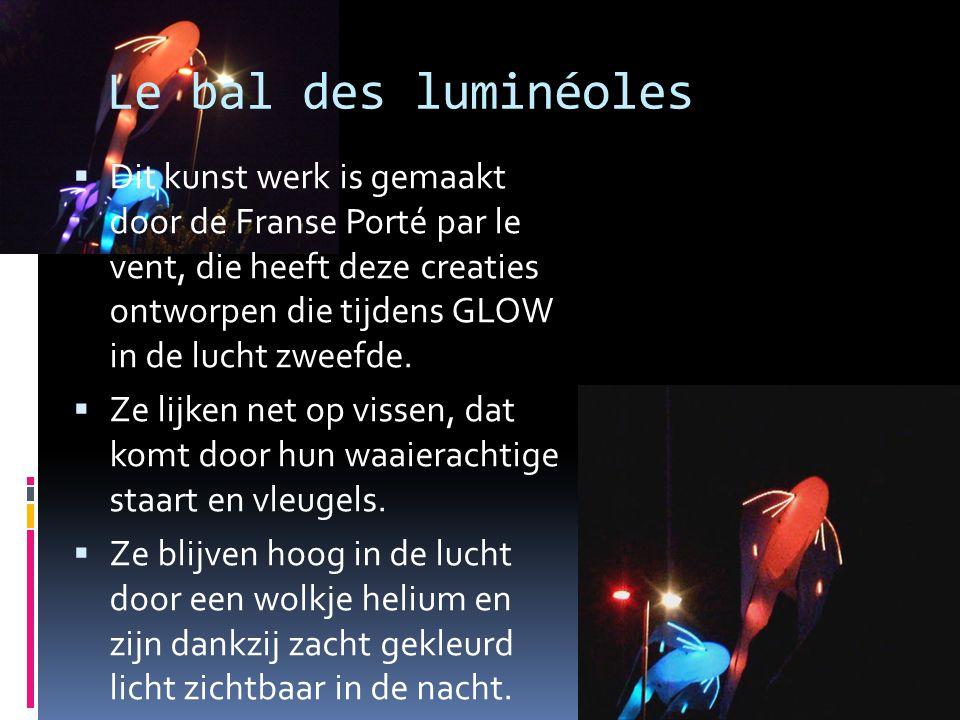 Le bal des luminéoles  Dit kunst werk is gemaakt door de Franse Porté par le vent, die heeft deze creaties ontworpen die tijdens GLOW in de lucht zwe