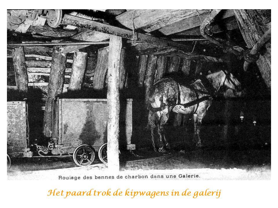 Het paard, met zijn « zweetkap » Waartegen de mijnwerker sprak en die hen scheen te begrijpen, Het gaf de indruk de Mijn iets menselijker te laten lij