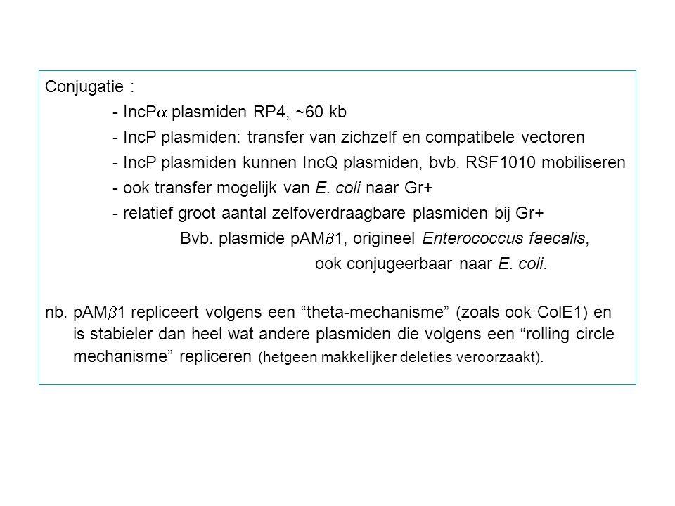 Conjugatie : - IncP  plasmiden RP4, ~60 kb - IncP plasmiden: transfer van zichzelf en compatibele vectoren - IncP plasmiden kunnen IncQ plasmiden, bv