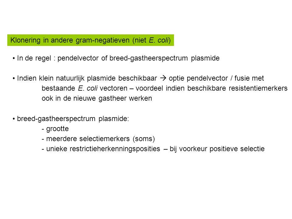 Klonering in andere gram-negatieven (niet E. coli) In de regel : pendelvector of breed-gastheerspectrum plasmide Indien klein natuurlijk plasmide besc