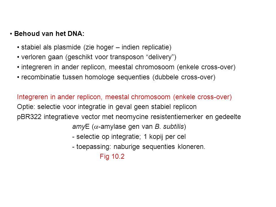 """Behoud van het DNA: stabiel als plasmide (zie hoger – indien replicatie) verloren gaan (geschikt voor transposon """"delivery"""") integreren in ander repli"""