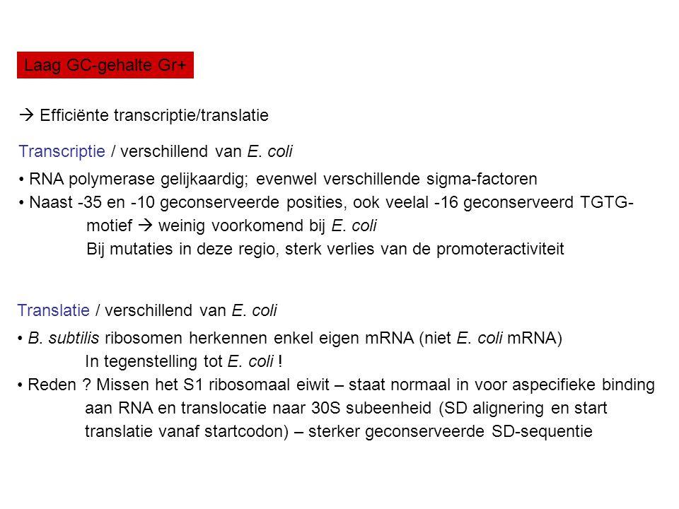 Laag GC-gehalte Gr+  Efficiënte transcriptie/translatie Transcriptie / verschillend van E. coli RNA polymerase gelijkaardig; evenwel verschillende si