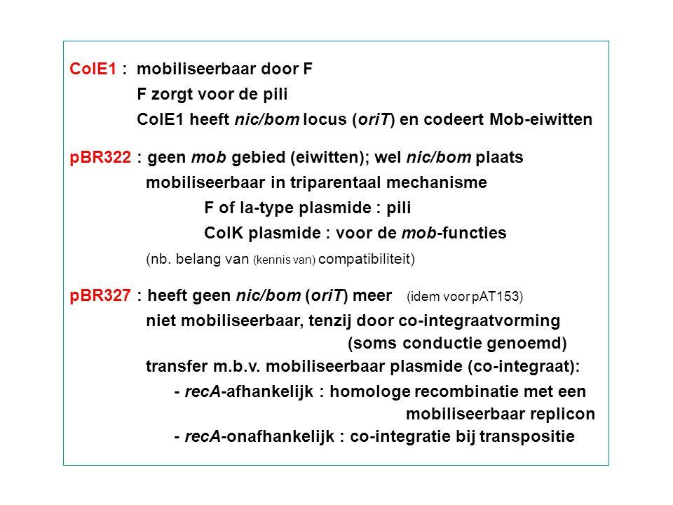 Laag GC-gehalte Gr+ pMUTIN vectoren insertionele mutagenese – geen onafhankelijk replicon in B.