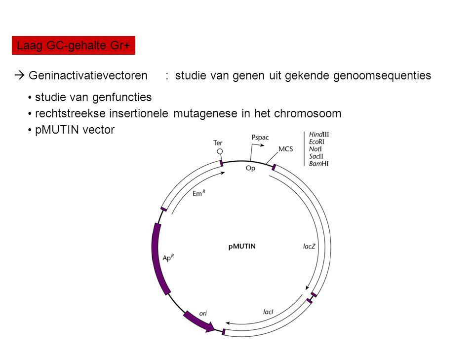 Laag GC-gehalte Gr+  Geninactivatievectoren : studie van genen uit gekende genoomsequenties studie van genfuncties rechtstreekse insertionele mutagen