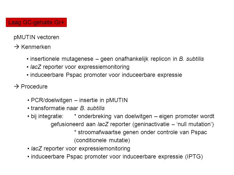 Laag GC-gehalte Gr+ pMUTIN vectoren insertionele mutagenese – geen onafhankelijk replicon in B. subtilis lacZ reporter voor expressiemonitoring induce