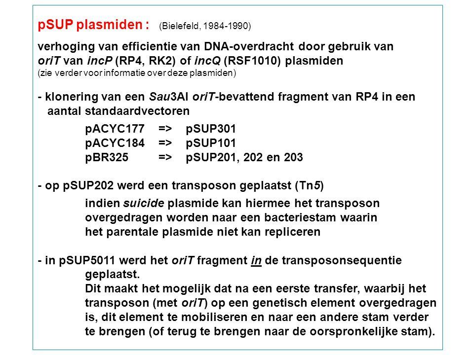 pSUP plasmiden : (Bielefeld, 1984-1990) verhoging van efficientie van DNA-overdracht door gebruik van oriT van incP (RP4, RK2) of incQ (RSF1010) plasm