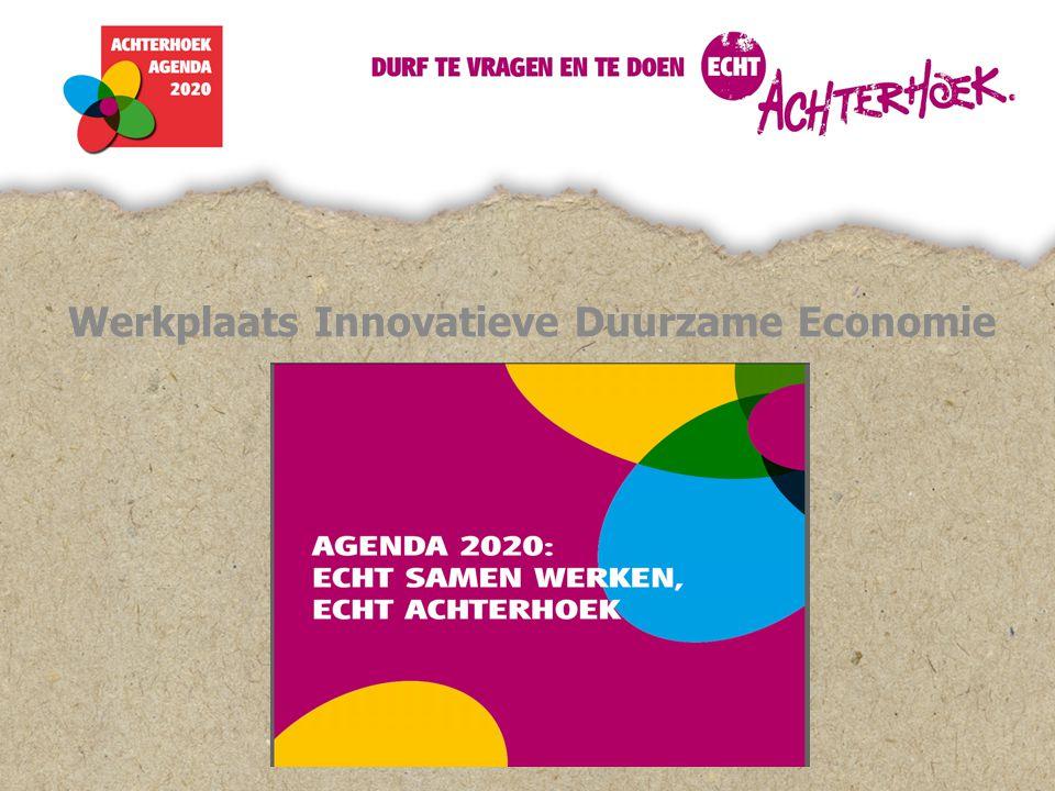 Voortgang Werkplaats Innovatieve Duurzame Economie 21 juni 2012 Vragen aan u.