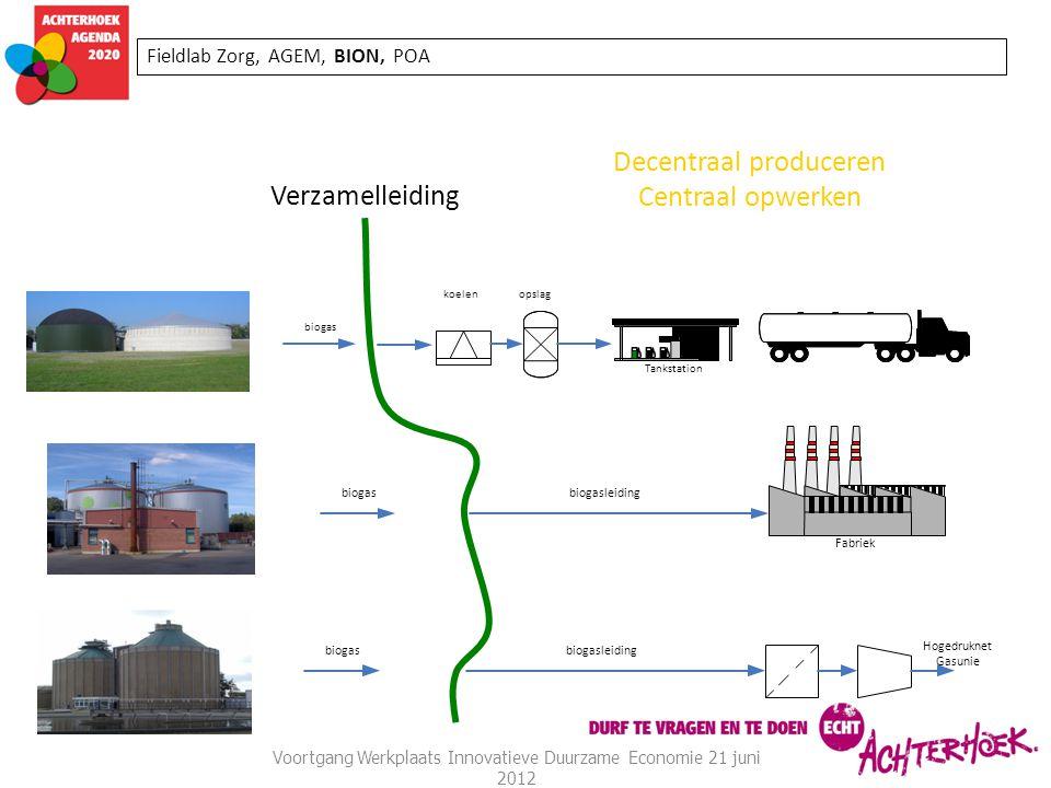 Voortgang Werkplaats Innovatieve Duurzame Economie 21 juni 2012 Fieldlab Zorg, AGEM, BION, POA