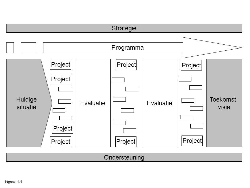 Toekomst- visie Evaluatie Huidige situatie Project Ondersteuning Strategie Programma Figuur 4.4