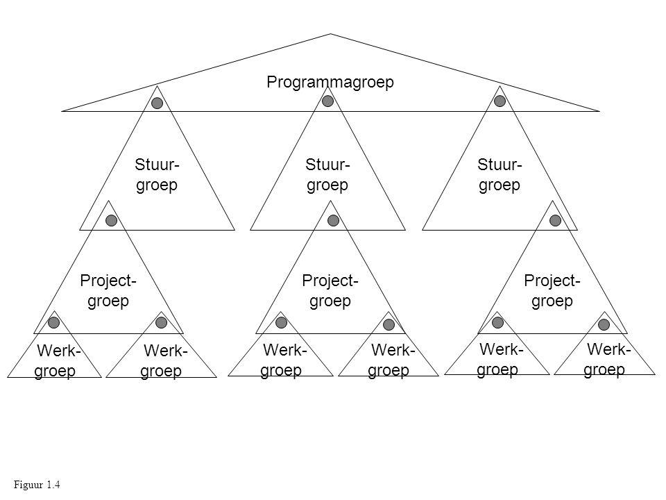 Programmagroep Stuur- groep Project- groep Werk- groep Stuur- groep Werk- groep Project- groep Werk- groep Figuur 1.4