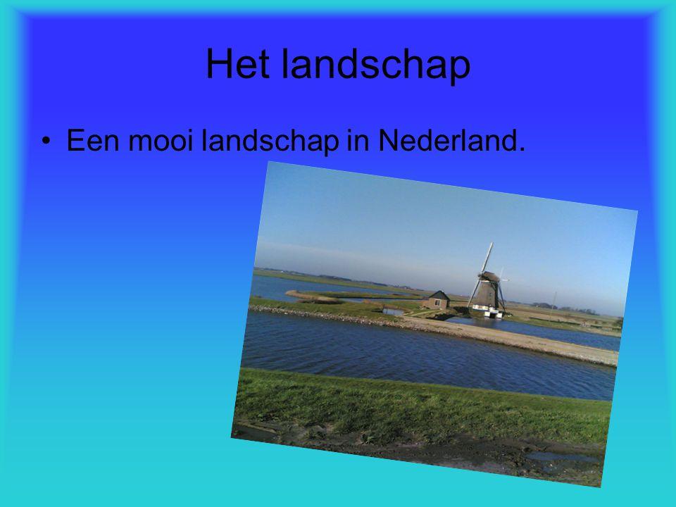 Het landschap Een mooi landschap in Nederland.