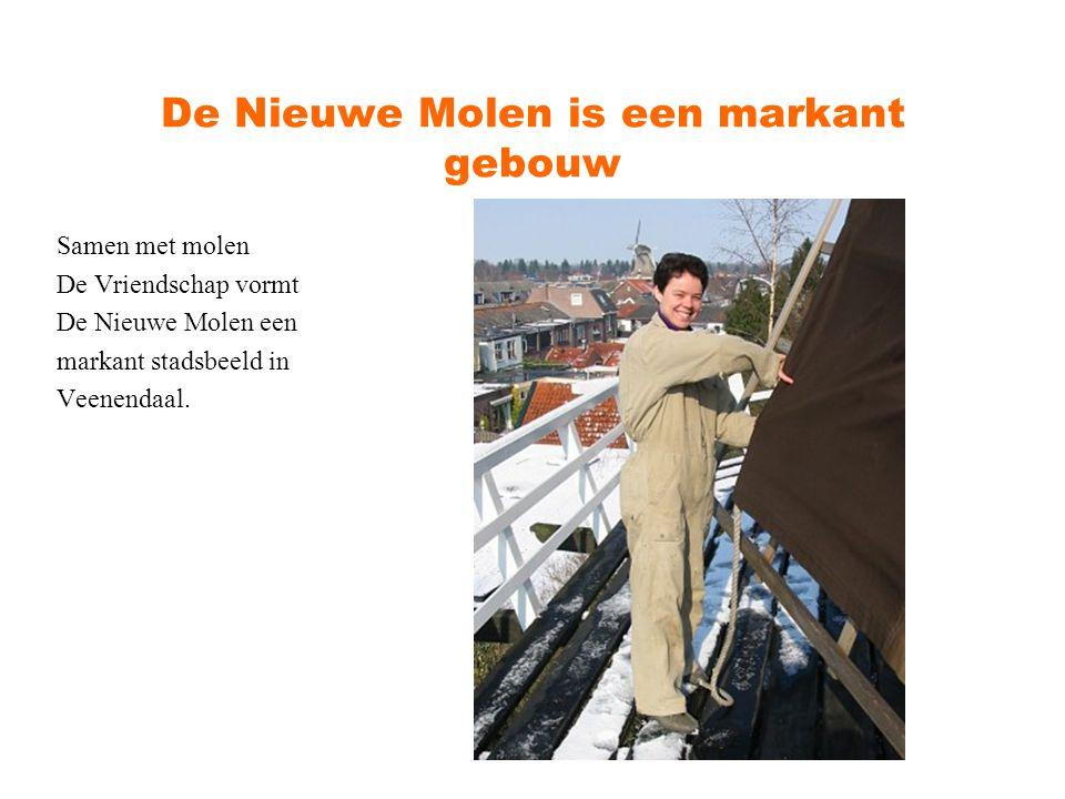 De Nieuwe Molen heeft een pracht toekomst Sinds 2005 beheert Het Utrechts Landschap 23 molens in de provincie Utrecht.
