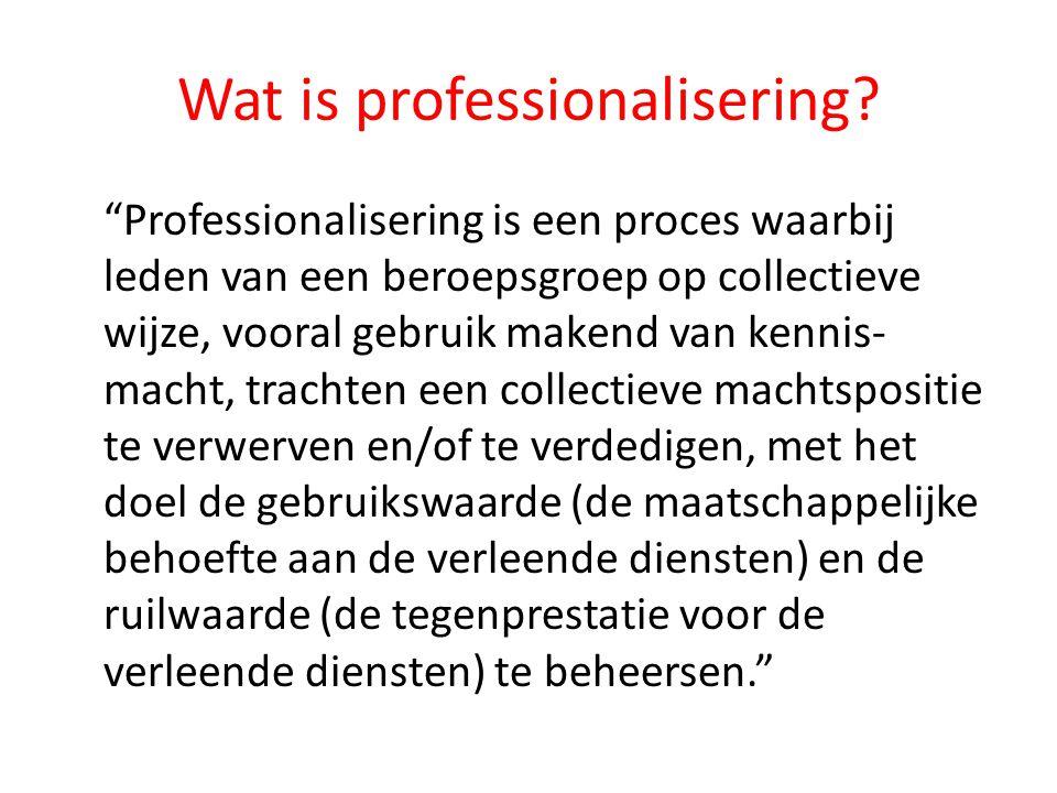 Wat is professionalisering.
