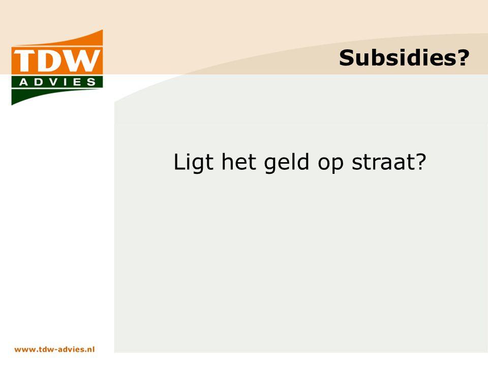 Subsidies? Ligt het geld op straat?