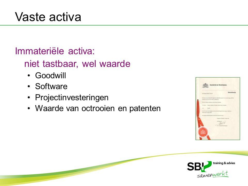 Vaste activa Immateriële activa: niet tastbaar, wel waarde Goodwill Software Projectinvesteringen Waarde van octrooien en patenten