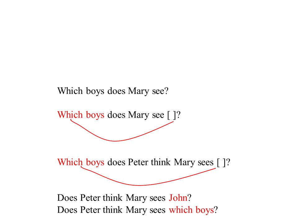 Which boys does Mary see? Which boys does Mary see [ ]? Which boys does Peter think Mary sees [ ]? Does Peter think Mary sees John? Does Peter think M
