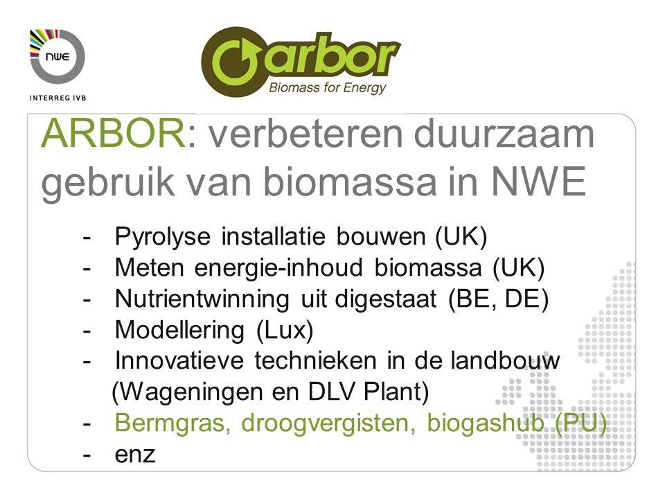 - Pyrolyse installatie bouwen (UK) - Meten energie-inhoud biomassa (UK) - Nutrientwinning uit digestaat (BE, DE) - Modellering (Lux) - Innovatieve technieken in de landbouw (Wageningen en DLV Plant) - Bermgras, droogvergisten, biogashub (PU) - enz ARBOR: verbeteren duurzaam gebruik van biomassa in NWE