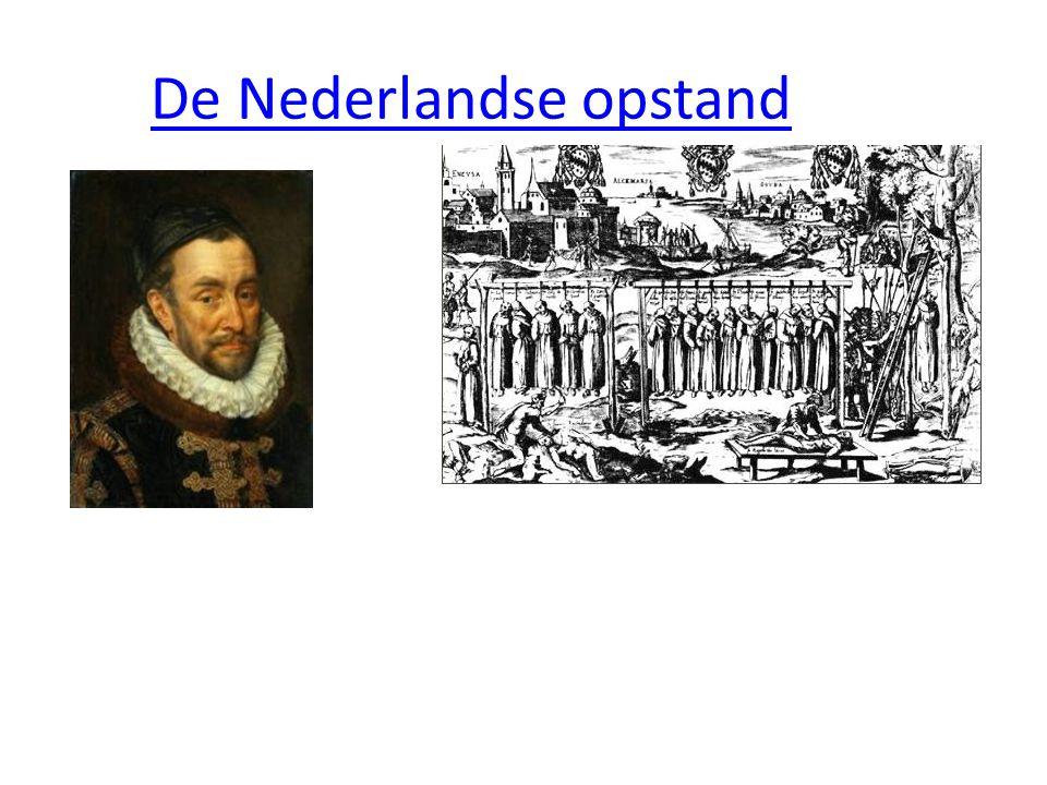 De Nederlandse opstand