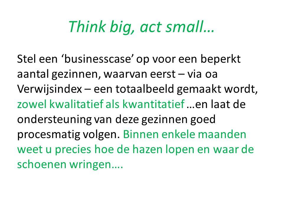 Think big, act small… Stel een 'businesscase' op voor een beperkt aantal gezinnen, waarvan eerst – via oa Verwijsindex – een totaalbeeld gemaakt wordt, zowel kwalitatief als kwantitatief …en laat de ondersteuning van deze gezinnen goed procesmatig volgen.